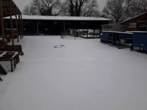 snow march 18
