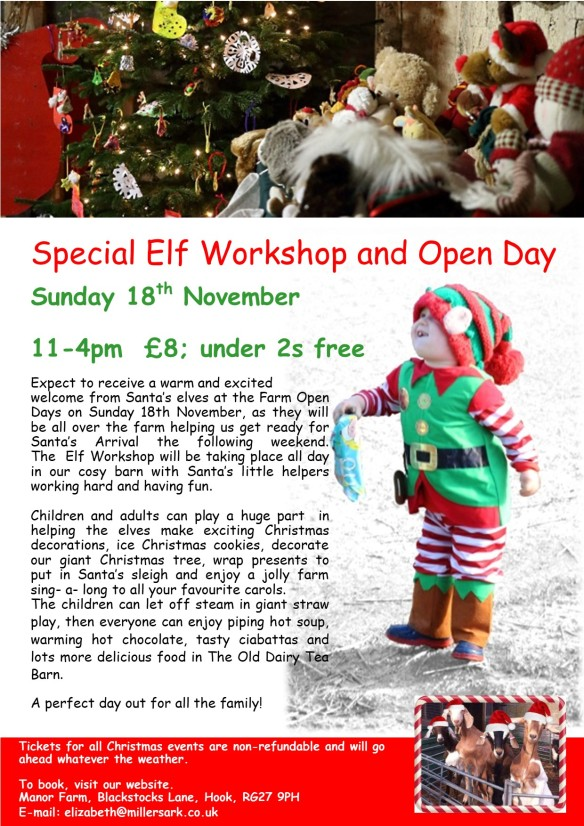 2018 Special Elf Workshop and Open Day
