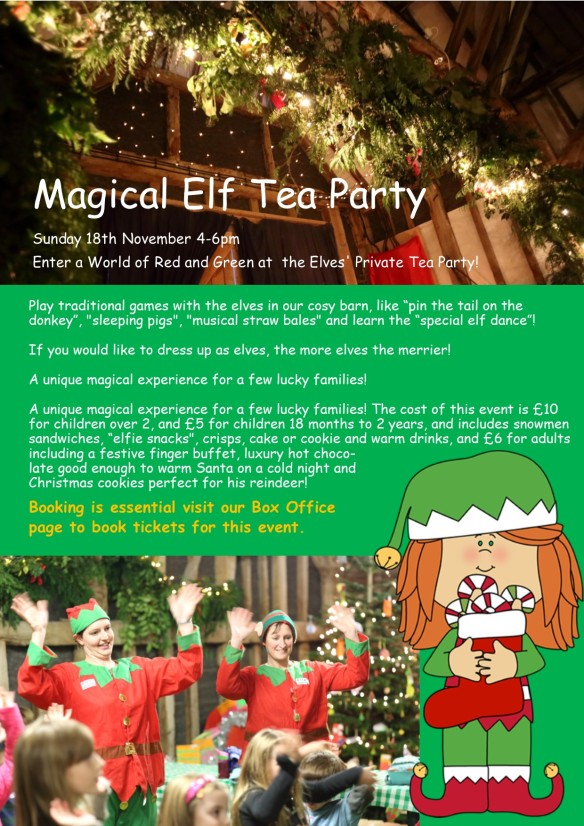 Elf Tea Party 18